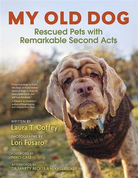 2016-03-02-1456939246-8625395-my_old_dog__most_recent_book_cover_6fc9545f9213517e450f801a.jpg