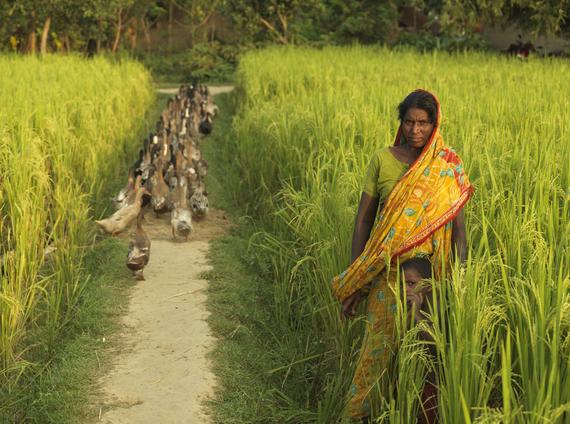 2016-03-03-1457009363-8500815-2012generalBangladesh5.jpg