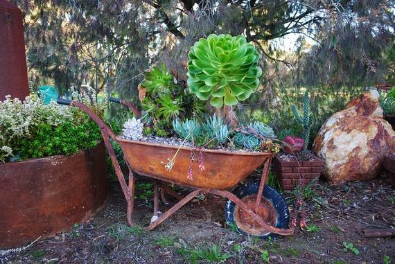 2016-03-03-1457046677-5761221-gardening495143_960_720.jpg
