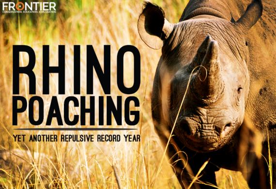 2016-03-11-1457692621-7026272-rhino.png
