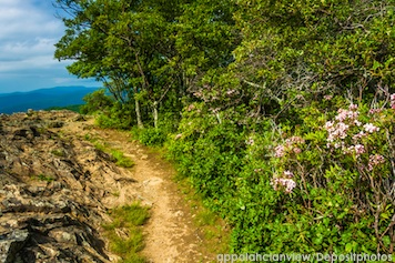 I Want To Walk The Appalachian Trail Inspired By The