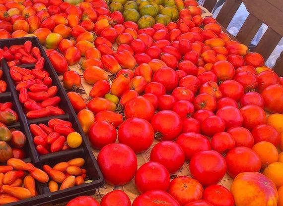 2016-03-14-1457985016-2133500-tomato_harvest_2014_website.jpeg