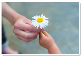 2016-03-15-1458041565-6935742-flower2.jpg