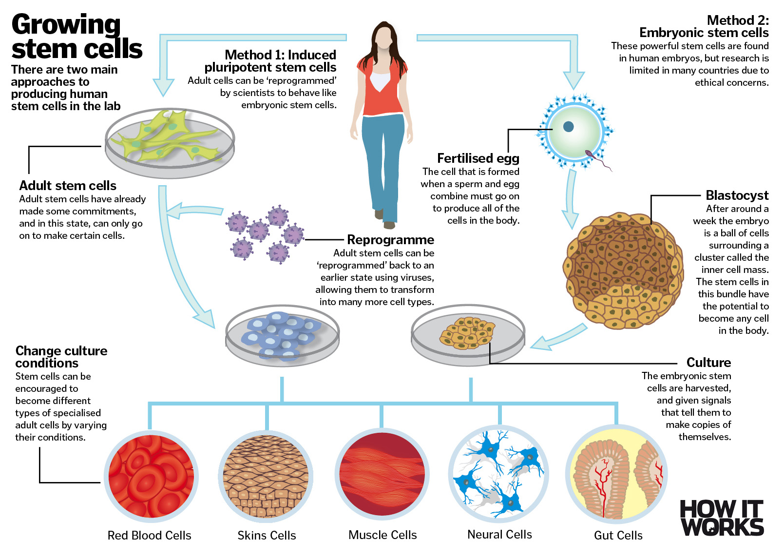 Miracle Science Six Amazing Medical Breakthroughs
