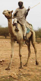 2016-03-18-1458336669-3008758-Darfur_report__Page_4_Image_2.jpg