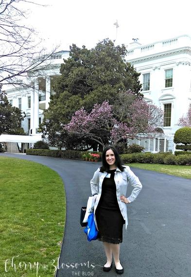 2016-03-19-1458417551-1581439-whitehouse33.jpg