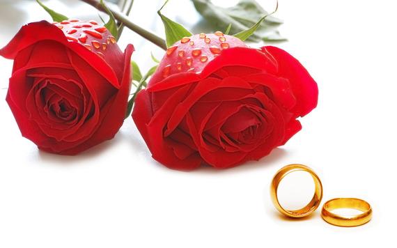 2016-03-19-1458422910-4186866-marriageandlove.jpg