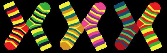 2016-03-21-1458529001-3890442-Socks.png