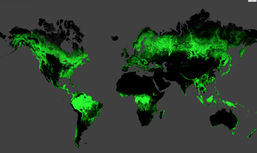 seeing the forest and the trees from space could change