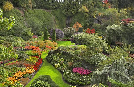 2016-04-05-1459887324-2123553-blooming_garden.jpg
