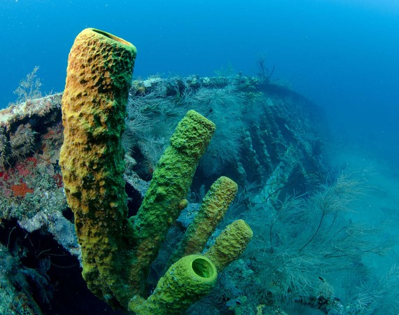 2016-04-08-1460133445-7801519-BucannearShipweckinGrenada.jpg