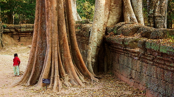 2016-04-11-1460378095-6490322-Angkor03884.JPG