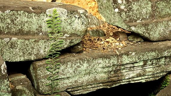 2016-04-11-1460378391-9326478-Angkor03891.JPG