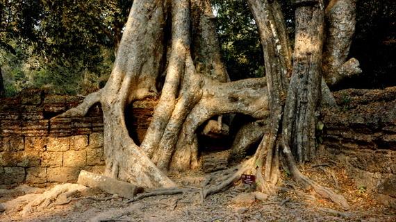 2016-04-11-1460383892-6183758-Angkor03886.JPG