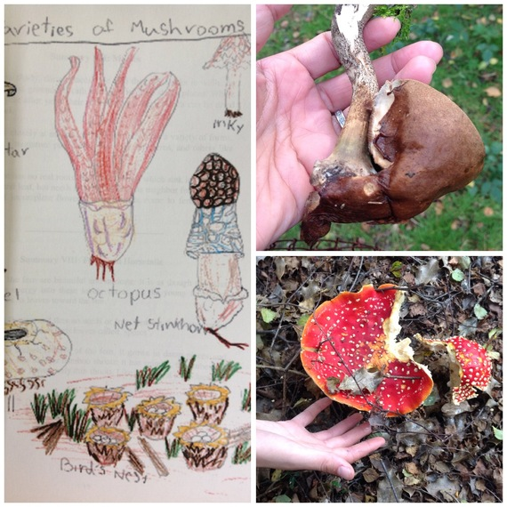 2016-04-19-1461034375-8457626-mushrooms.jpg