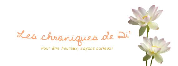 2016-04-20-1461142715-417172-leschroniques1.png