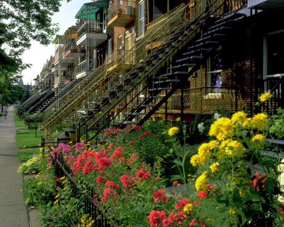 Les escaliers de montr al une histoire fascinante et un for A la maison de pierre et dominique montreal