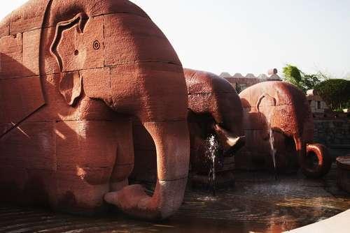2016-04-21-1461224522-6520035-Elephants.jpg