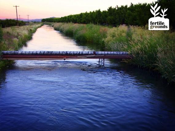 2016-04-26-1461689390-4355728-fertilegroundsblogserieswater.jpg