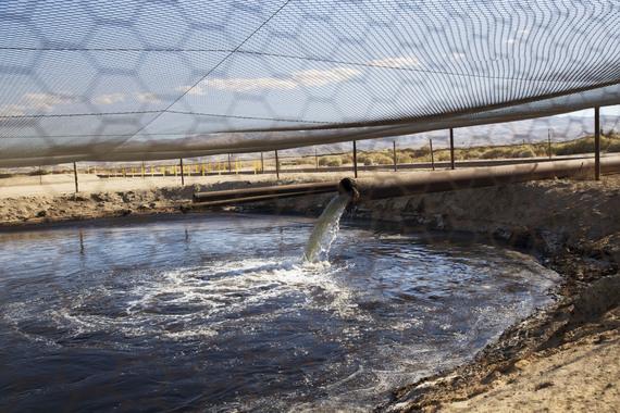 2016-04-29-1461945894-5012451-FrackingwastewaterKernCountySarahCraigFacesofFracking.jpg