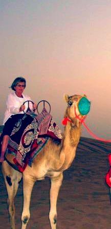 2016-05-04-1462386835-3853027-Camel.jpg