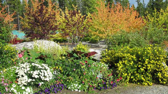 2016-05-05-1462471165-962810-Yukongardens.jpg