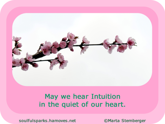2016-05-09-1462768967-805257-QuoteforTuningintoIntuition.png