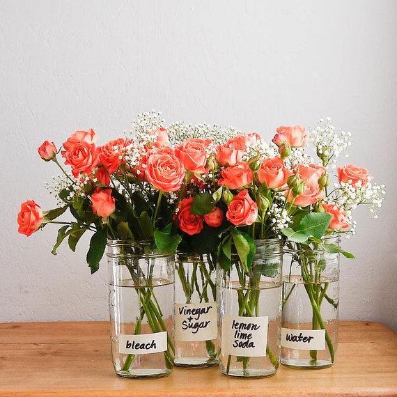 2016-05-10-1462883539-7480853-flowercare.jpg
