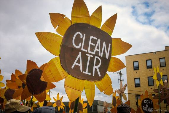 2016-05-10-1462910106-938535-CleanAirSunflower.jpg