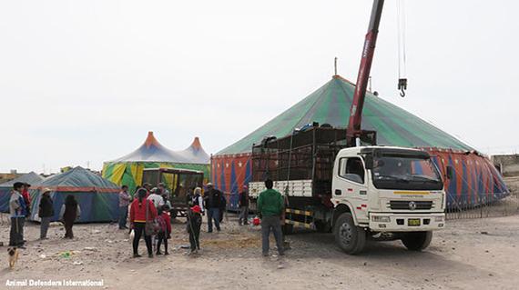 2016-05-11-1462927164-5691983-6_ADI_truck_at_circus.jpg