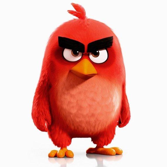 2016-05-17-1463514402-2919222-angry.a.jpg