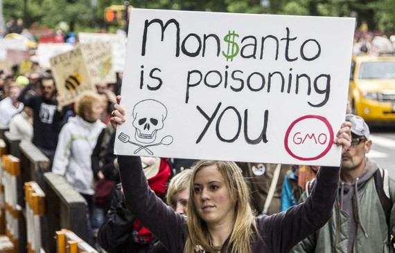 Image result for monsanto gmo