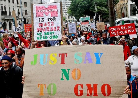 2016-05-26-1464267141-5490387-GMO.jpg