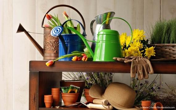 2016-05-26-1464284152-6906118-8_Gardening_shutterstock_73311547768x480.jpg