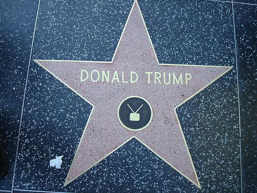 2016-05-29-1464551871-7106231-512pxDonald_Trump_star_Hollywood_Walk_of_Fame.JPG
