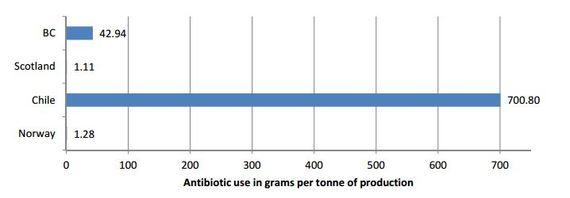 2016-06-13-1465805017-7363811-antibioticusegramperton.JPG