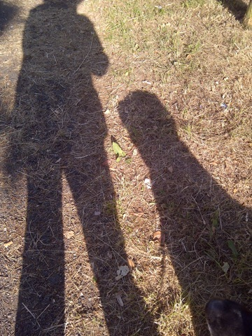 2016-06-14-1465916895-5419072-Shadowbestmates.jpg
