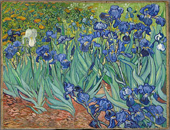 2016-06-16-1466105090-1372397-IrisesVincent_van_Gogh.jpg