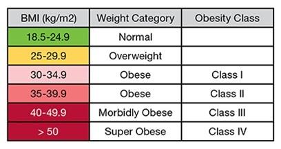2016-06-29-1467221988-9164463-Obesity.jpg