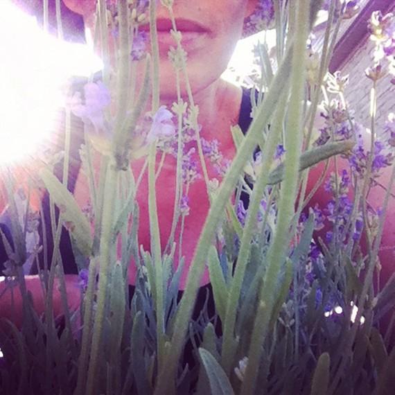2016-06-30-1467306795-4444223-Lavender.jpg