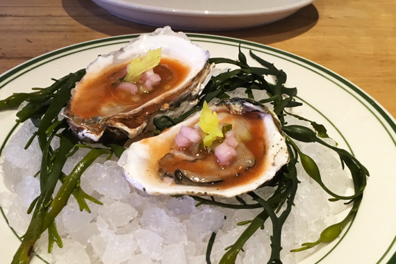 2016-07-06-1467806532-597990-Oysters.png
