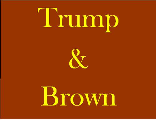 2016-07-12-1468294796-9971497-TrumpBrown.jpg