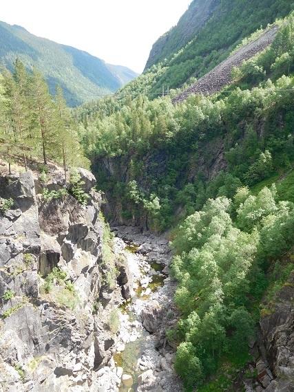2016-07-12-1468353020-7903244-Norwayplus20161890.JPG