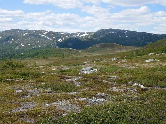 2016-07-13-1468435110-9804409-Norwayplus20161940.JPG