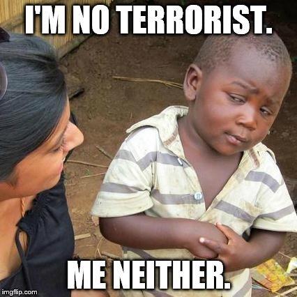 2016-07-14-1468525699-4389332-terror.jpg