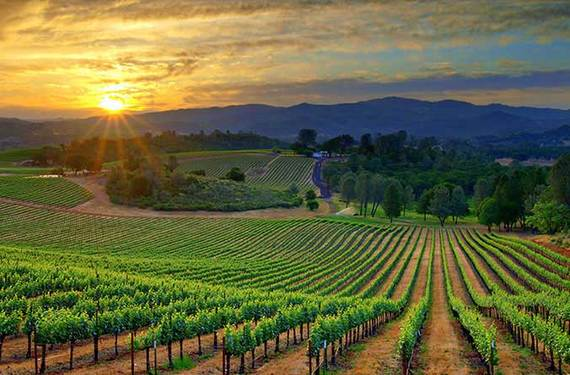 2016-07-19-1468911780-3714950-loudoncliffsresort.com.winecountry.1.jpg