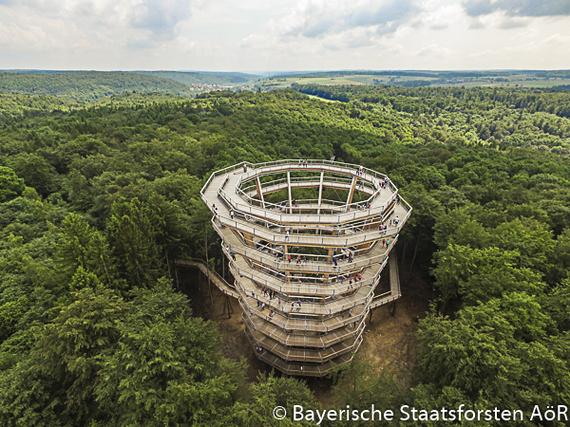 2016-07-22-1469189137-5915297-Baumkronenpfad_Steigerwald_0024.jpg