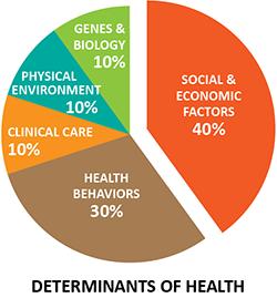 2016-08-05-1470421229-8733640-socialdeterminants_health250.PNG