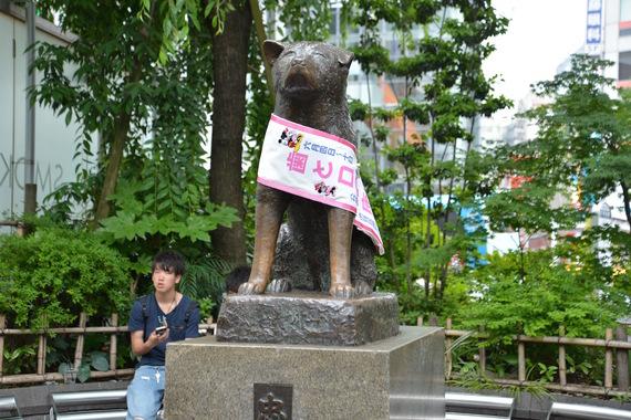 2016-08-08-1470693844-8813291-Hund.jpg