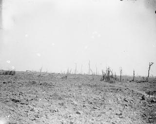 2016-08-15-1471271359-5239468-The_Battle_of_the_Somme_Julynovember_1916_Q4078.jpg